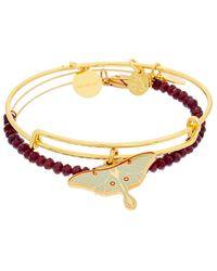 ALEX AND ANI - Exclusives Luna Moth Set Of 2 Expandable Bracelets - Lyst