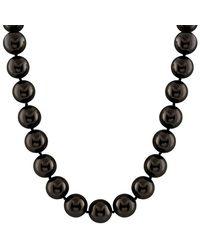 Splendid - Silver 16-17mm Shell Pearl Necklace - Lyst