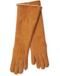 Maison Fabre - Moyen Mouton Long Gloves - Lyst