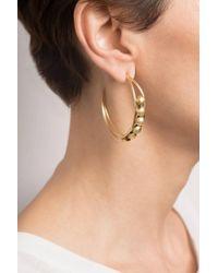 Hissia | Chloe Hoop Earrings In Gold | Lyst