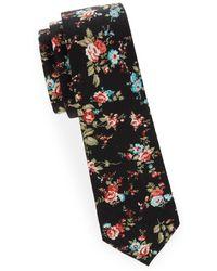 Joe's Collection - Slim Cotton Tie - Lyst