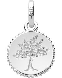 Links of London - Amulet Sterling Silver Tree Of Life Charm - Lyst