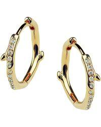 Shaun Leane - Cherry Branch Yellow-gold Vermeil And Diamond Hoop Earrings - Lyst