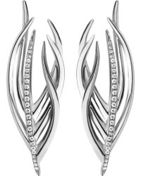 Shaun Leane - White Feather Silver And Diamond Earrings - Lyst