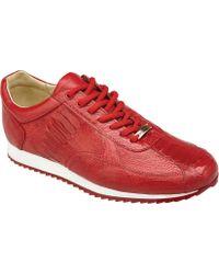 Belvedere - Dayton Sneaker - Lyst