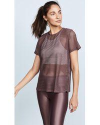 Koral Activewear - Fantasy Size Up Tee - Lyst