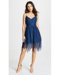 BB Dakota - Lace Fit And Flare Dress - Lyst