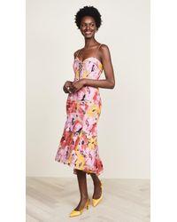 Nicholas - Tropical Lace Dress - Lyst