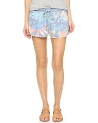 Sol Angeles - Orchid Garden Knit Shorts - Lyst