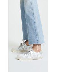 Ash - Majestic Sneakers - Lyst