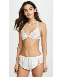 Flora Nikrooz - Dotted Netted Bra With Venise Lace - Lyst
