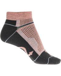 FARM TO FEET - Roanoke Low Cut Socks - Lyst