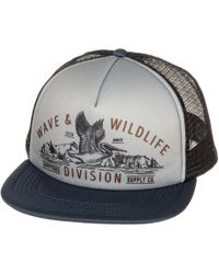 Lyst - HippyTree Yosemite Trucker Hat in Black for Men 8eafe502f0a