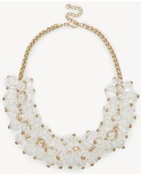 Sole Society - Sugarplum Statement Necklace - Lyst