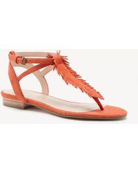 Sole Society - Mara T Strap Flat Sandal - Lyst