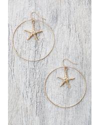 Ki-ele - Hawaii Large Hawaiian Starfish Drop Hoop Earrings - Lyst