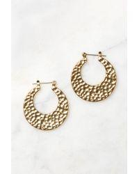 South Moon Under - Gold Hammered Sheet Hoop Earrings - Lyst