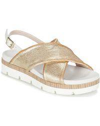 Tosca Blu | Dresc Women's Sandals In Gold | Lyst