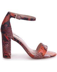 Linzi Nelly Women's Sandals In Orange