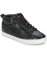 The Most Popular Feiyue Delta Mid Dragon Hi Top Trainers Black For Women Sale