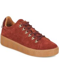 No Name - Ginger Trainer Women's Shoes (trainers) In Brown - Lyst