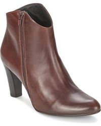 Betty London - Gipsy Women's Low Ankle Boots In Brown - Lyst