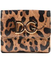 Dolce & Gabbana Dauphine Leo French Flap Wallet