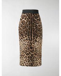 Dolce & Gabbana - Gonna a tubino con stampa leopardata - Lyst