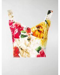 39f58e4b02cdb Dolce   Gabbana - Floral-print Cropped Top - Lyst