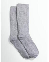 Talbots - Plus Size Exclusive Chevron Trouser Sock - Lyst