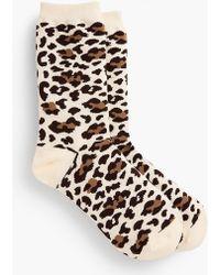 Talbots - Animal Print Trouser Socks - Lyst