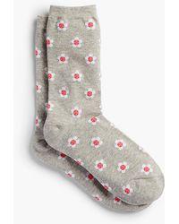 Talbots - Daisy Trouser Socks - Lyst