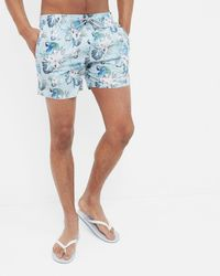 Ted Baker - Floral And Parrot Print Swim Shorts - Lyst