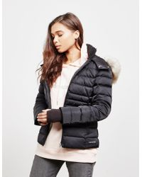 Calvin Klein - Down Padded Jacket Black - Lyst