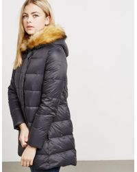Armani Jeans - Womens Down Quilted Padded Jacket - Online Exclusive Black - Lyst