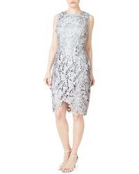 Precis Petite - Ayda Scalloped Lace Sheath Dress - Lyst