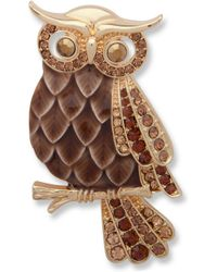 Anne Klein - Crystal Owl Brooch - Lyst