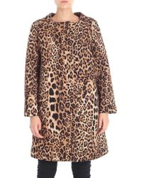 Clips - Animal Printed Flared Coat - Lyst