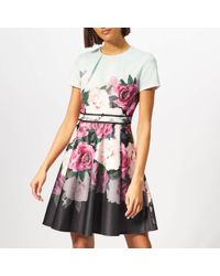 Ted Baker - Magnificent Skater Dress - Lyst