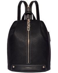 Fiorelli - Bolt Zipped Backpack - Lyst