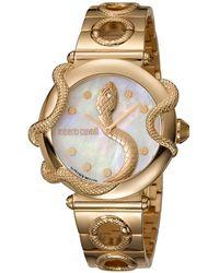 Roberto Cavalli Mop Gold Plated Stainless Steel Rv2l020m0061 Women's Wristwatch 36mm