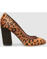 Tabitha Simmons - Lydia Leopard-print Calf Hair Court Shoes - Lyst