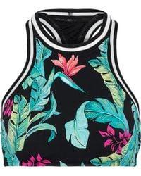 Seafolly Jungle Out There Printed Bikini Top Black