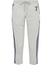 Markus Lupfer - Woman Daria Cropped Appliquéd Jersey Track Trousers Light Grey - Lyst