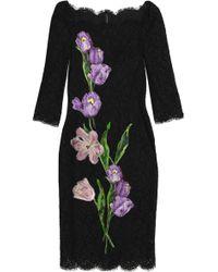Dolce & Gabbana - Floral-appliquéd Scalloped Corded Lace Dress - Lyst
