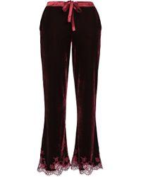 I.D Sarrieri - Woman Lace-trimmed Velvet Pyjama Trousers Merlot - Lyst