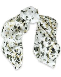 Roberto Cavalli - Printed Silk Scarf - Lyst