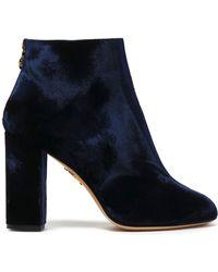 Charlotte Olympia - Velvet Ankle Boots - Lyst