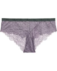 Love Stories - Dragonfly Lace Low-rise Briefs - Lyst