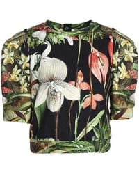 Adam Lippes - Cropped Floral-print Cotton-jersey Top - Lyst